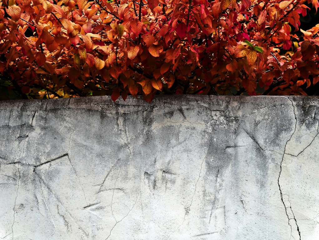 Autumn colors and wall in Old historic Cromwell Town