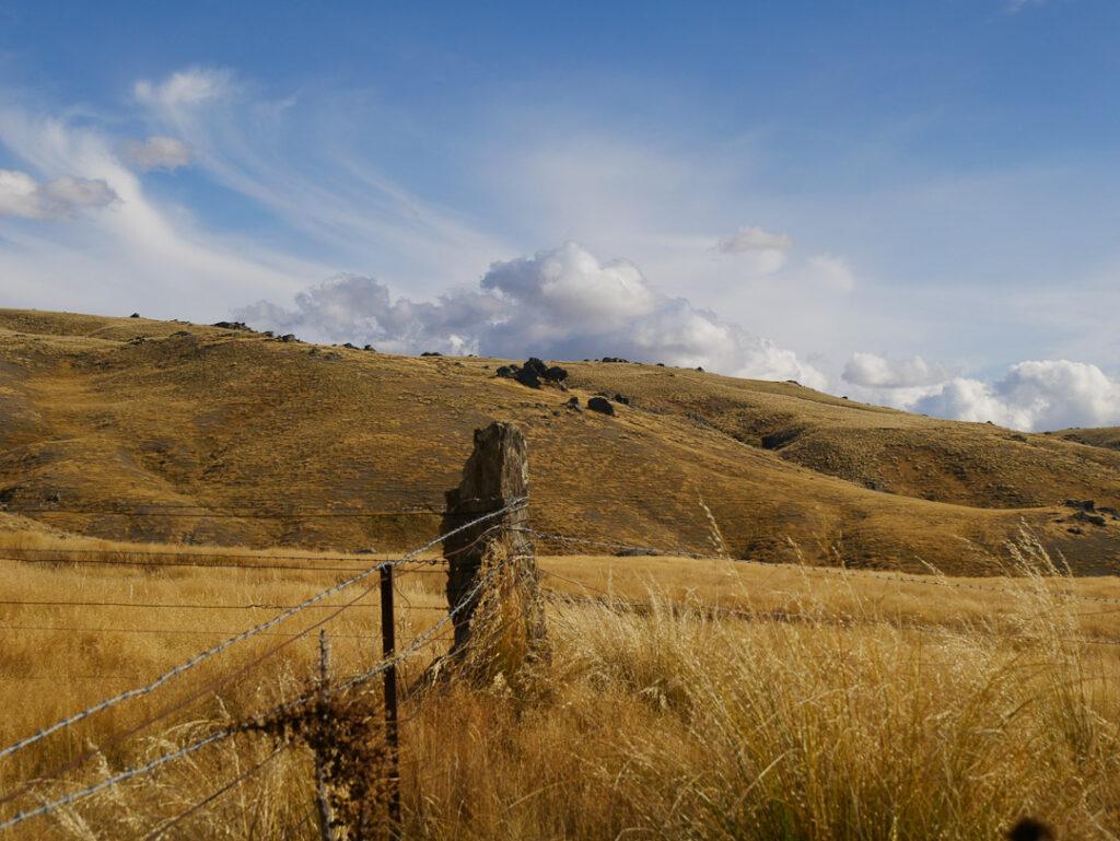 Fence Post, Rock and Pillar Range, Central Otago NZ