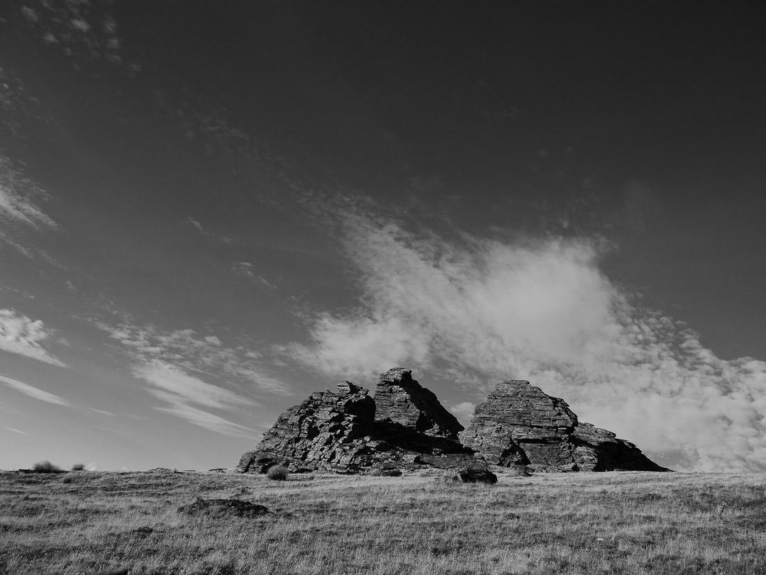 Tor, Rock and Pillar Range, Central Otago NZ