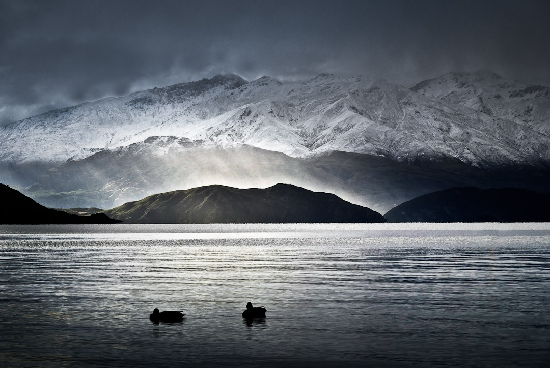 Lake Wanaka with ducks on the lake foreshore and snow and bad weather in the background