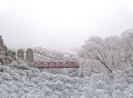 Ophir Bridge Hoar frost
