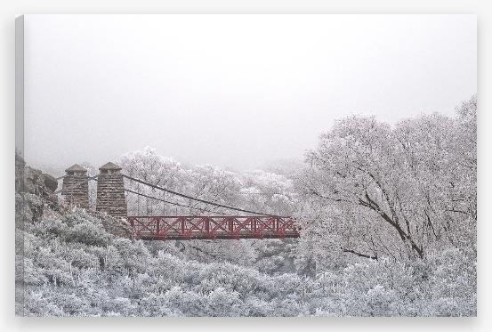 Ophir Bridge Hoar Frost printed on canvas