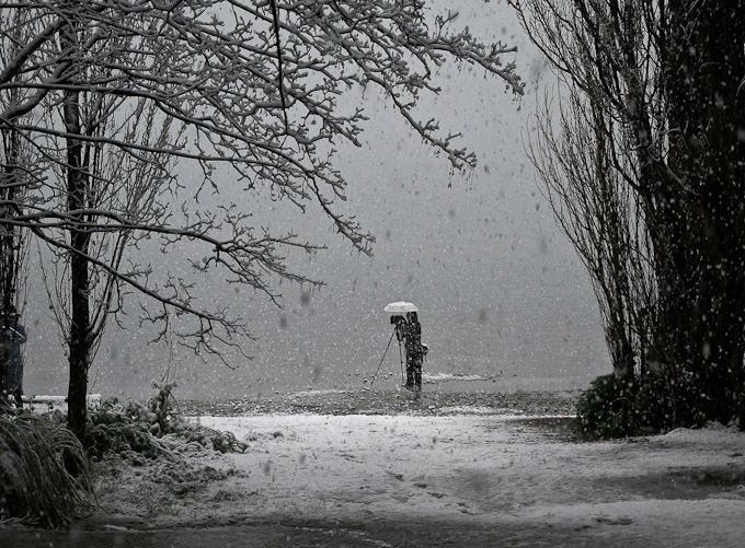 A Wanaka Tree photographer working in a  snow-storm under an umbrella