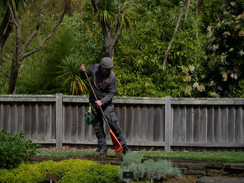 Garden worker at Dunedin Botanic Garden