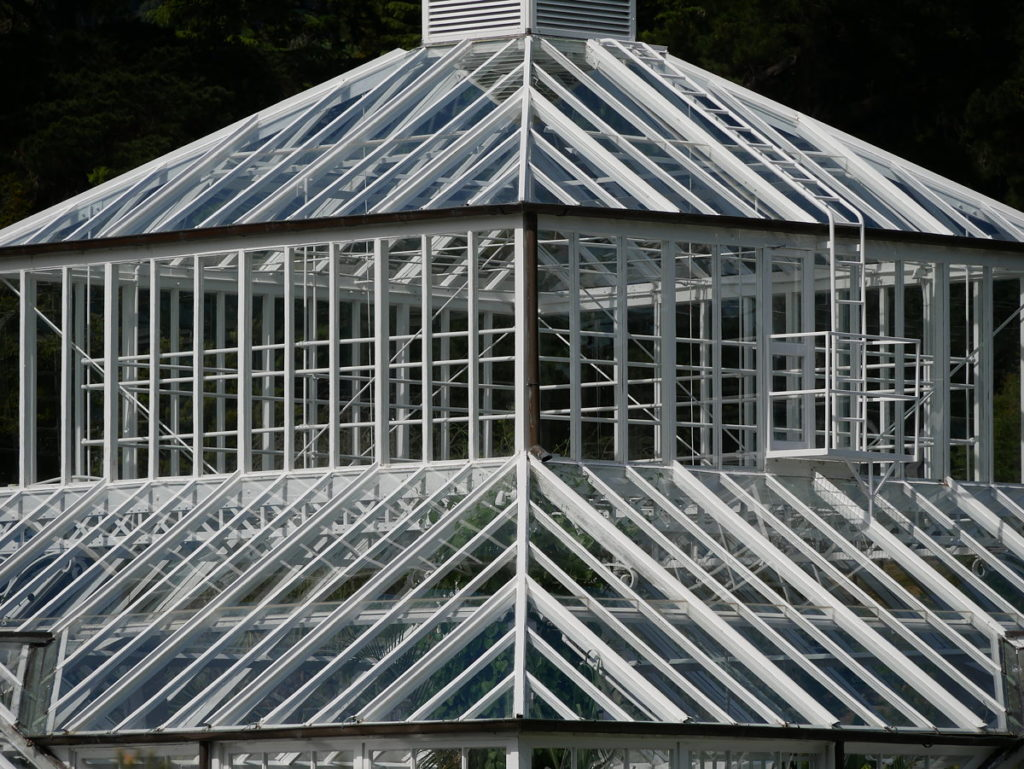 Dunedin Botanic Garden, the roof of the Winter Garden Glasshouse