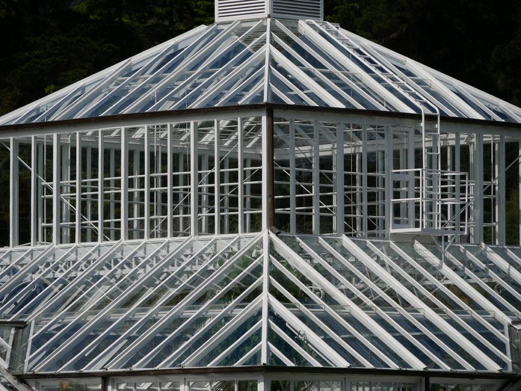 Dunedin Botanic Garden, the roof of the Winter Garden Glasshouse